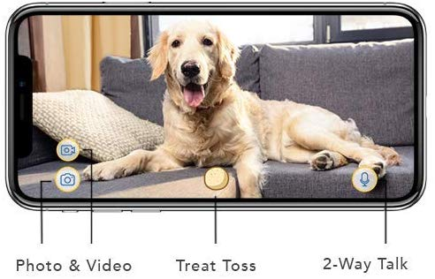 Smart Phone Integration With Furbo Dog Camera