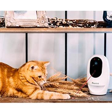 Pawbo Life Pet Camera Playing