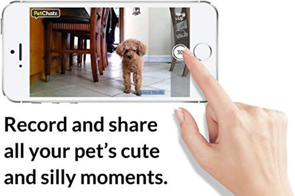 PetChatz Video Camera Recording