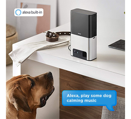 Petcube Pet Camera Alexa Compatibilty