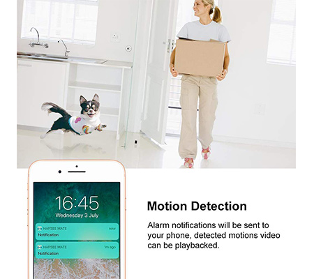 TOOGE Motion Detection