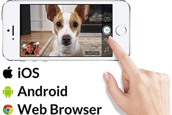 mobile app compatibility for PetChatz and PawCall dog video camera