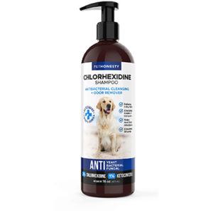 PetHonesty Antibacterial & Fungus Treatment Shampoo