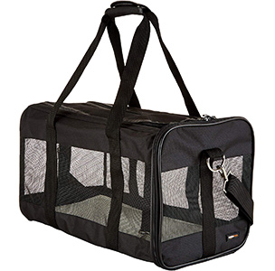 AmazonBasics Pet Carrier