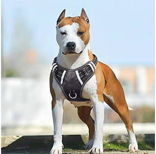 BABYLTRL No Pull Adjustable Pet Harness