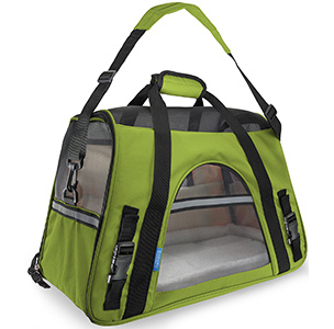 Paws and Pals Pet Carrier