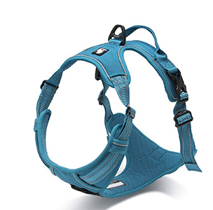 TRUE LOVE Adjustable No-Pull Dog Harness