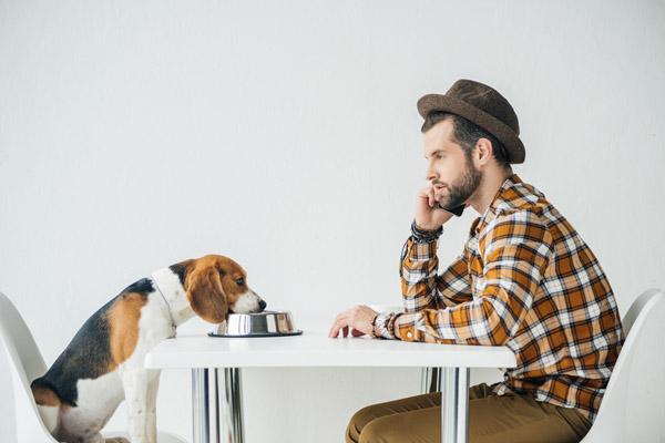 dog owner and dog talking on dog camera