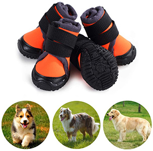 Petilleur Dog Shoes