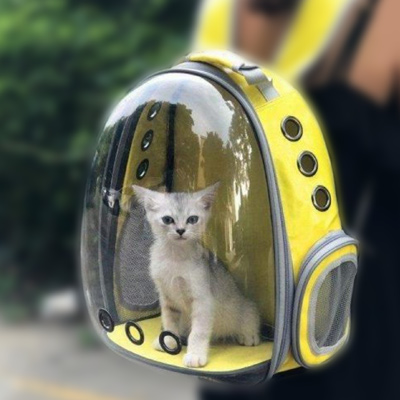 Are Cat Backpacks Safe?