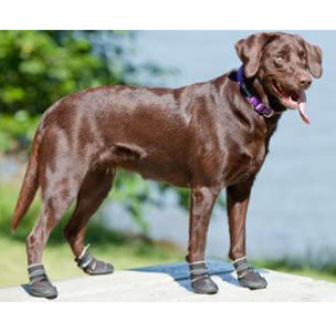 Canine Equipment Ultimate Trail Dog Booties