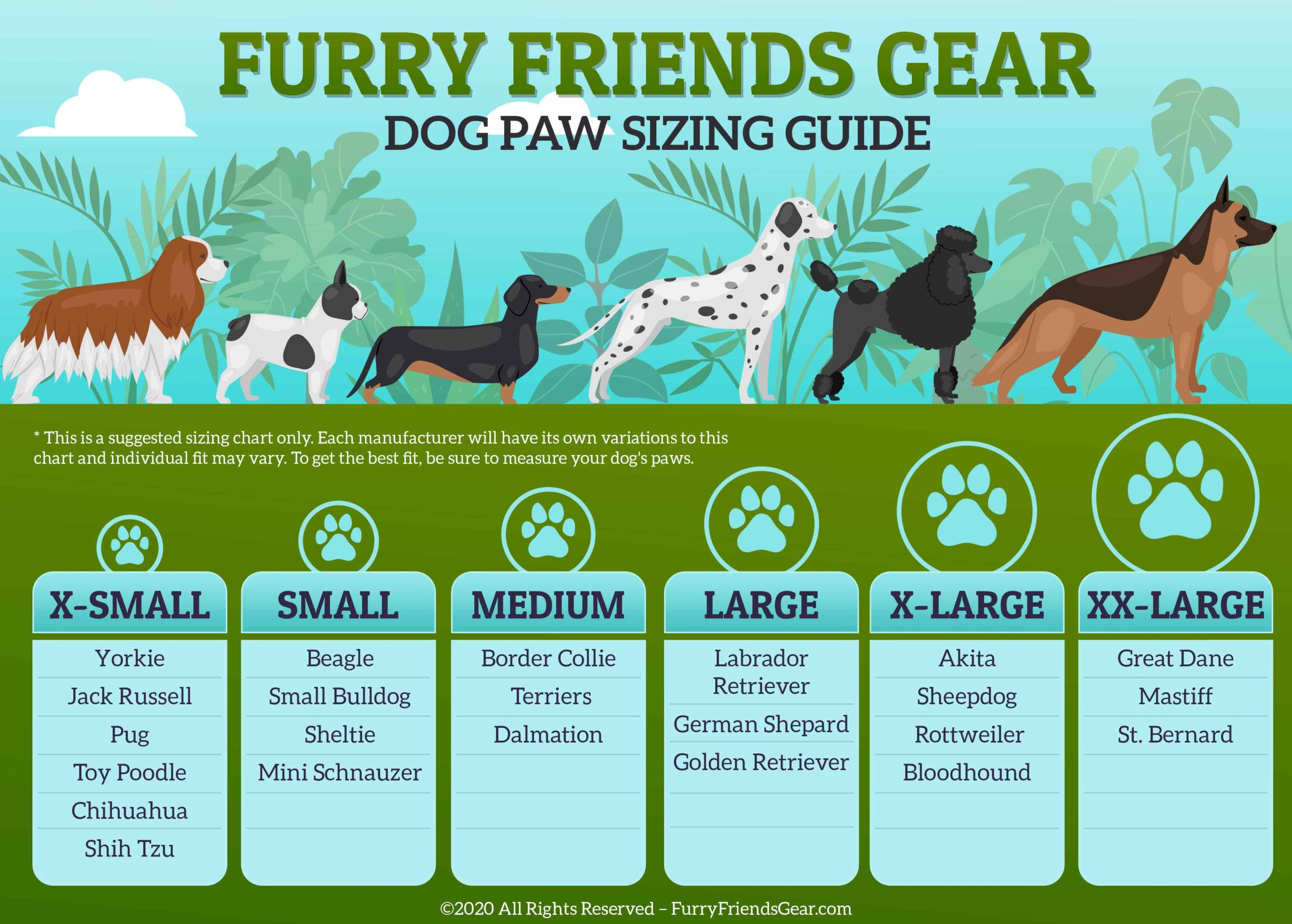 Dog Paw Sizing Guide