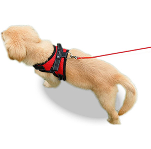 No pull pet harness by Copatchy_