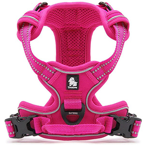 Truelove Adjustable Dog Harness