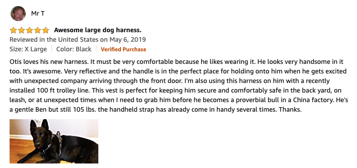 Winsee dog harness review