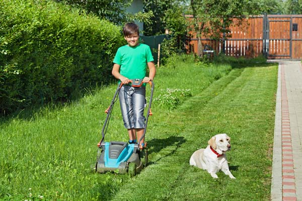 mowing lawn and picking up dog poop with poop scooper