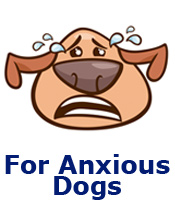 For Anxious Dogs