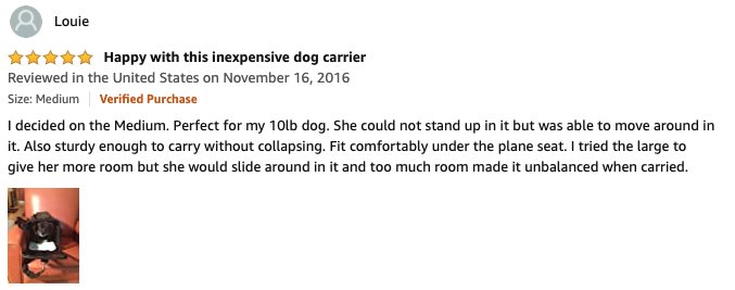 Louie - AmazonBasics Soft-Sided Pet Carrier Review