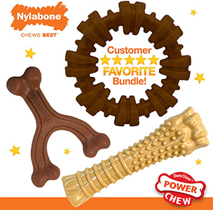 Nylabone Power Chew Textured Dog Chew Ring Toy