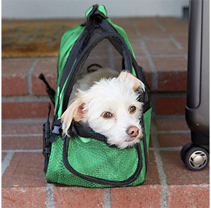 Paws & Pals Airline Approved Pet Carrier With Dog