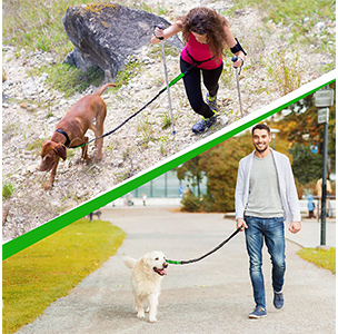 SparklyPets Hands-Free Dog Leash