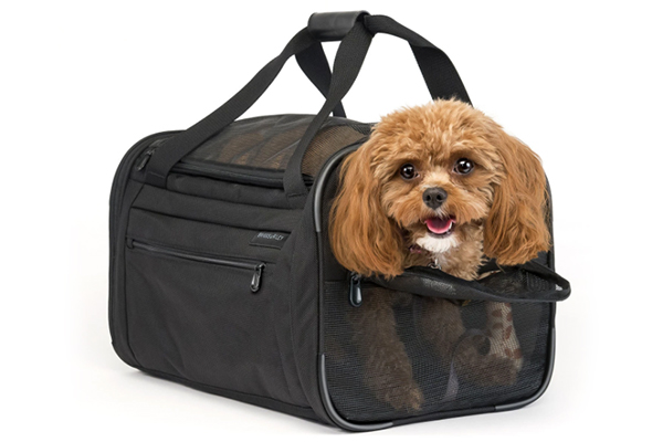 Are dog carriers safe