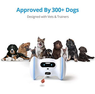 VARRAM Pet Robot Pricing And Availability