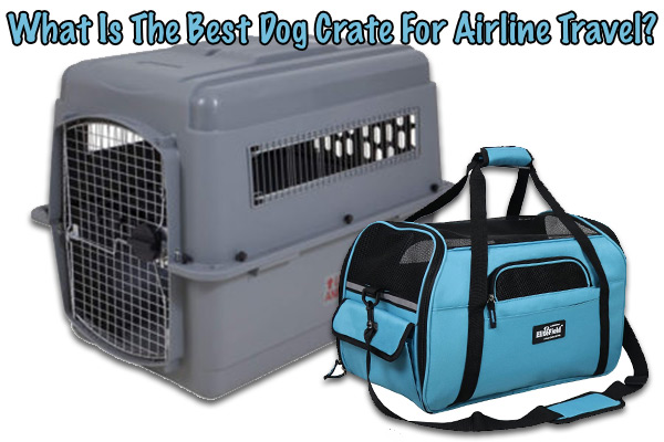 best pet carriers for air travel
