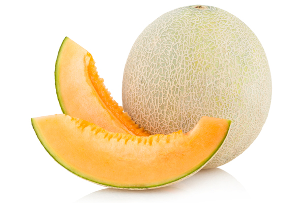 cantaloupe treats for dogs