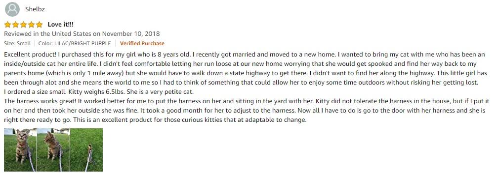 PetSafe Feline Harness Review