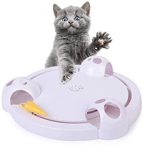 Running Pet Cat Toy