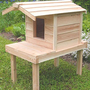 Cozy Cat Furniture Outdoor Cat House Review
