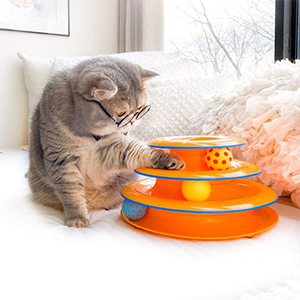 Petstages Cat Tracks Cat Toy Review