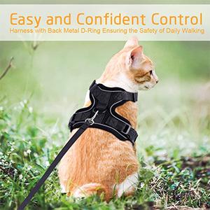 Rabbitgoo Cat Vest Harness Review