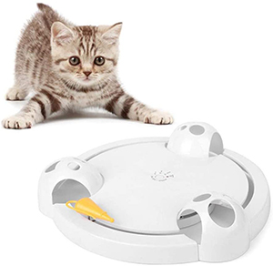 Running Pet Interactive Cat Toy