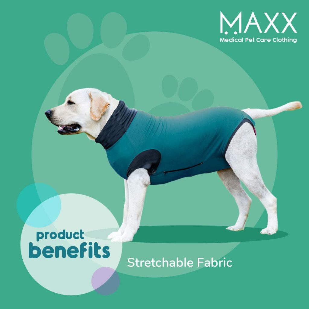 MAXX Dog Recovery Suit 2