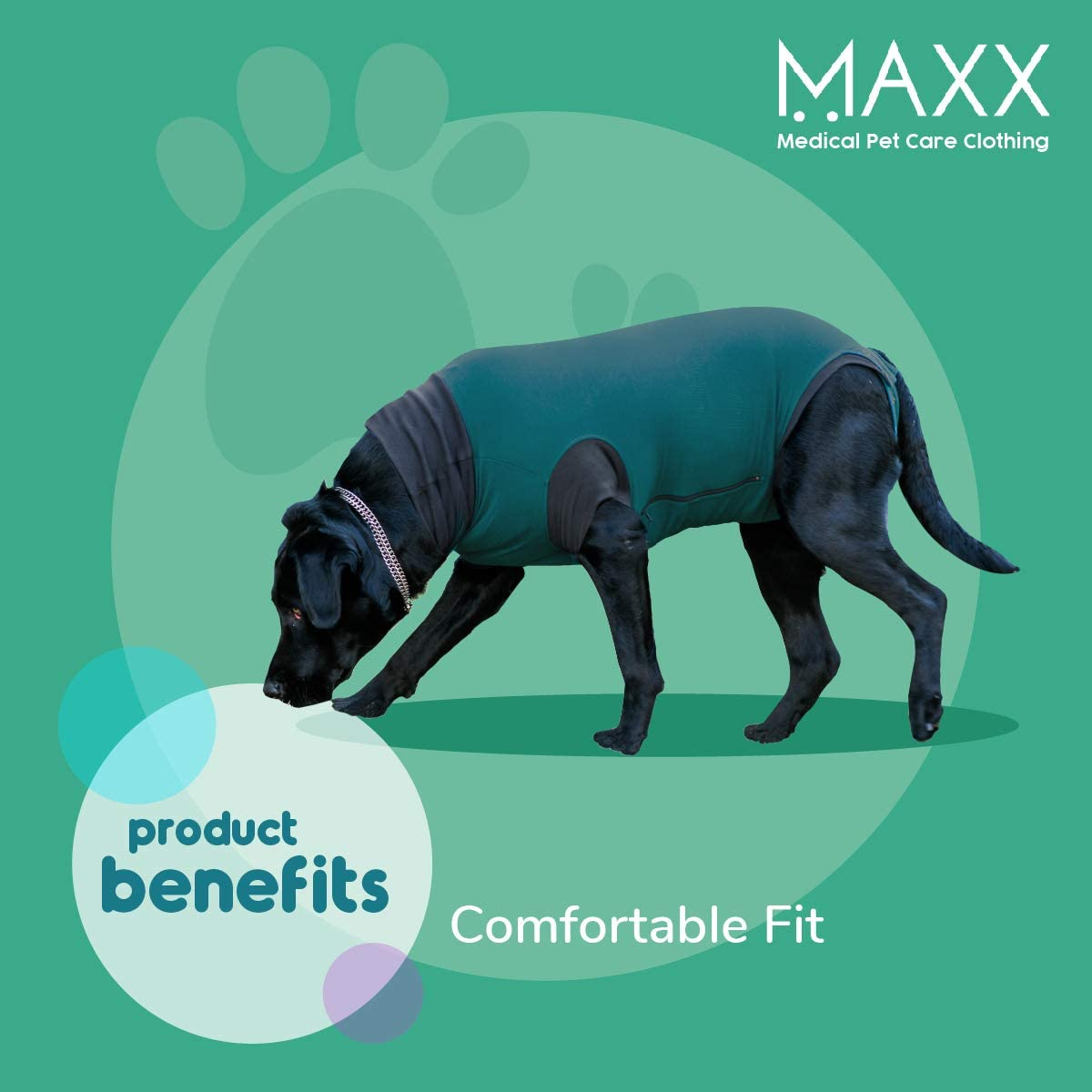 MAXX Dog Recovery Suit - Comfortable Fit
