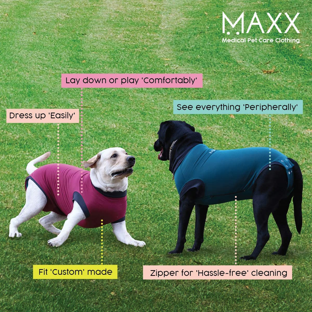 MAXX Dog Recovery Suit Review