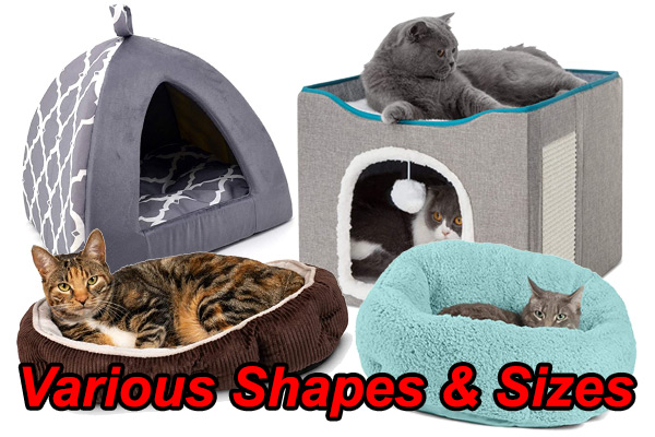 Cat Beds in all shapes and sizes
