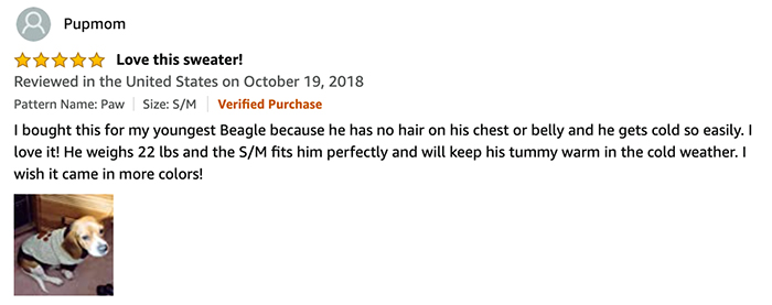 BINGPET review by pupmom