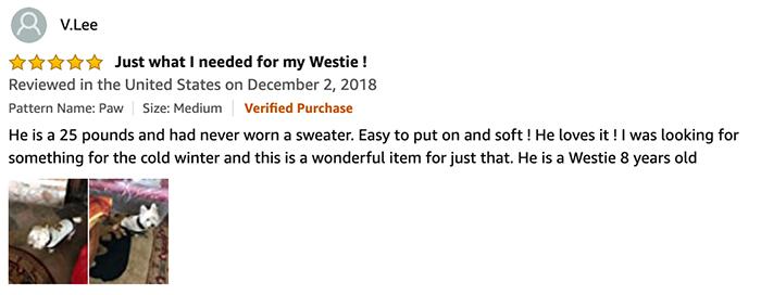 BINGPET review by vlee